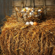 Basket of freshly laid  eggs lying on straw - Stock Photo