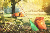 Racking leaves and preparing for Halloween — Stock Photo