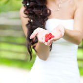 Juicy red raspberries in the hands of the bride — Stock Photo