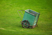 Truck to collect the grass on the background of green grass — Stock Photo