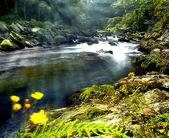 Mountain River *Best for web use — Stock Photo