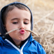 Stock Photo: Boy in haystack with toy moustaches