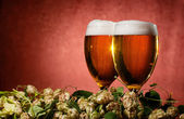 Two glasses of beer with hop — Stock Photo