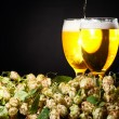 Two glasses of beer with hop — Stock Photo #7018132