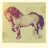 Cavallo andaluso. — Vettoriale Stock