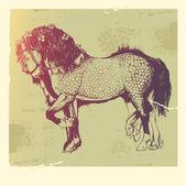 Cavalo andaluz. — Vetorial Stock