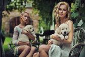 Dvě roztomilá blondýnka vytěžený štěňata — Stock fotografie
