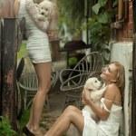 Две дамы красота с милые щенки — Стоковое фото