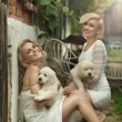 Perfect blonde beauties holding young dogs — Stock Photo