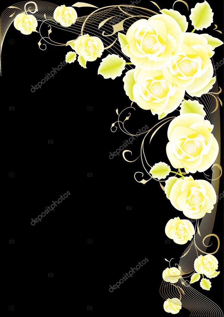 黑色背景上的金玫瑰