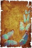 蓝蝴蝶 — 图库照片
