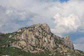 """Mountain """"cat"""" — Stockfoto"""