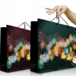 Girl hand pick up the green christmas shopping bag — Stock Photo #7954285