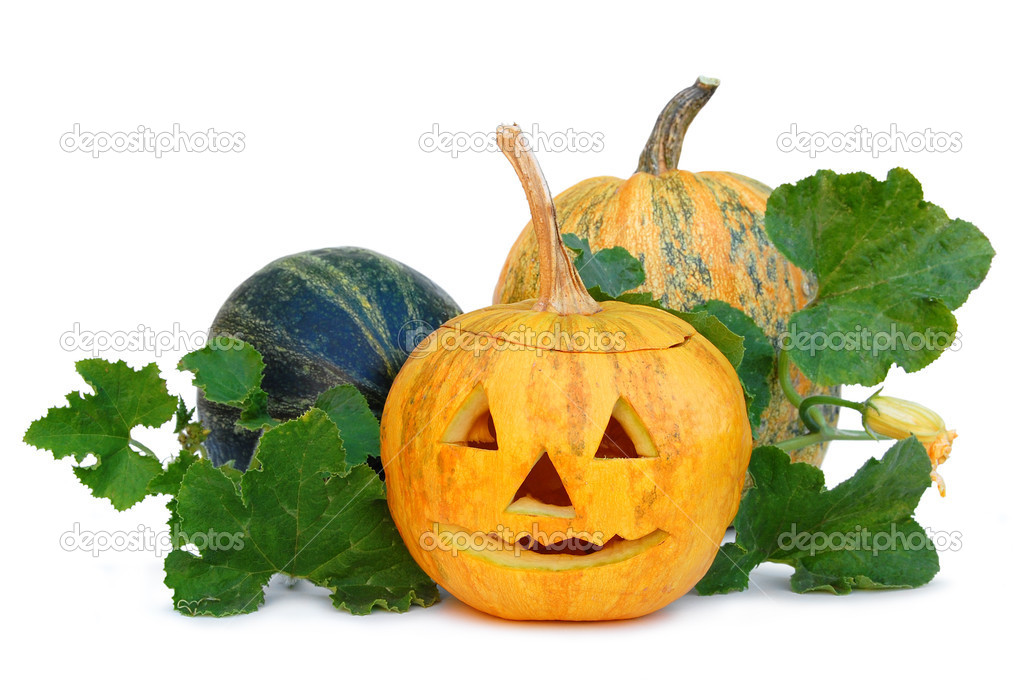 Halloween pumpkin vegetable fruit isolated on white background  — Stock Photo #7457181