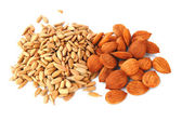 Seed of sunflower and apricot — Stock Photo