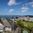 Stock Photo: View over Wellington