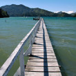 Stock Photo: Landing stage in Marlborough Sounds