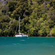 Stock Photo: Sailboat and beach in Marlborough Sounds