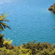 Marlborough Sounds — Stock Photo #7914173