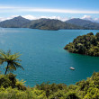 Stock Photo: Marlborough Sounds