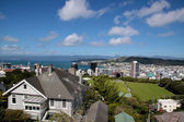 View over Wellington — Stock Photo