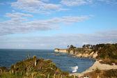Coast line near Cape Foulwind — Stock Photo