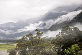 Haast Pass with fog clouds — ストック写真