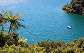 Marlborough Sounds — Stock Photo