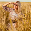 Stock Photo: Woman sitting on wheat field
