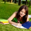 Woman laying on grass and writing - Stock Photo
