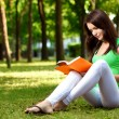 Woman sitting on ground and reading book - Stock Photo