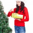 Stock Photo: Womtaking toy for artifical fur tree