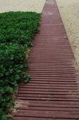 Wood path in beach — Stock Photo