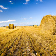 Straw stack — Stock Photo #6745942