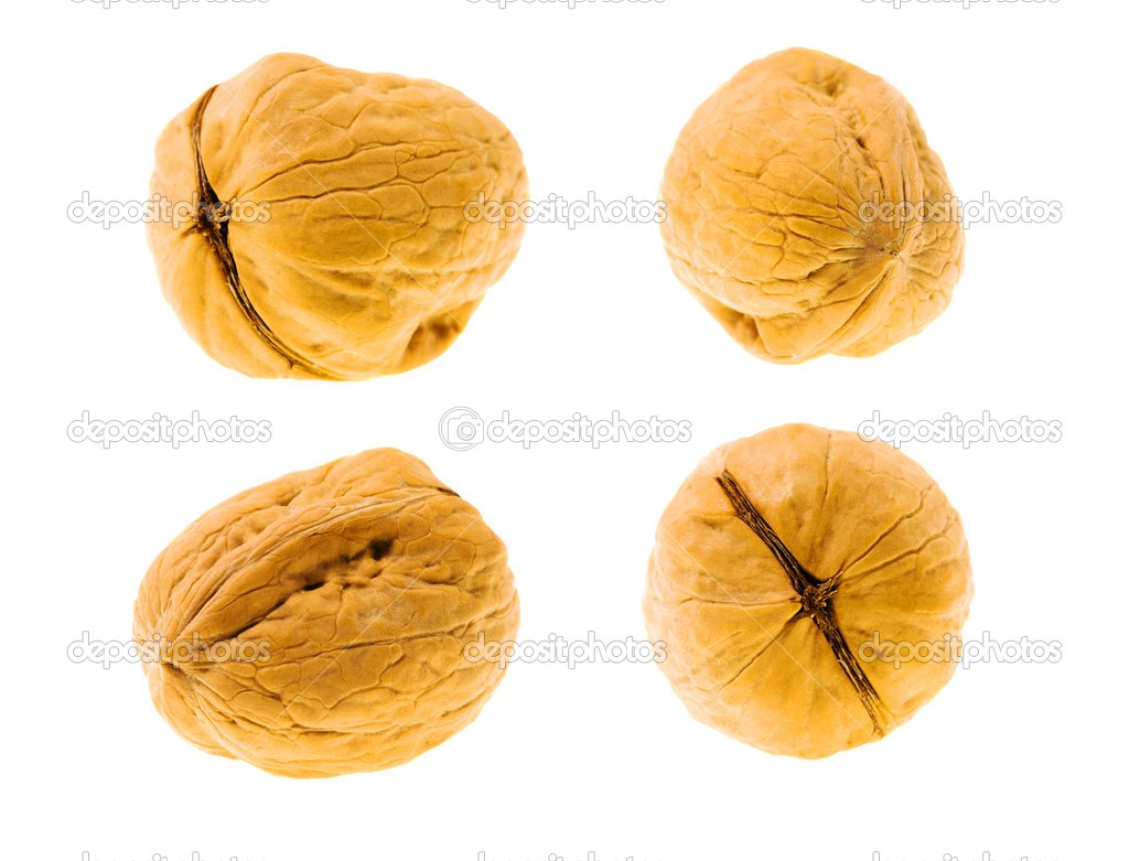 Photo of a walnut from the various parties (consists of several photos, Isolated on a white background, Small depth of sharpness) — Stock Photo #7232609