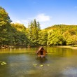 Lake (autumn season) - Stock Photo
