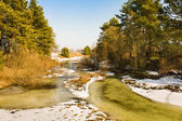 The river in the winter — Stock Photo