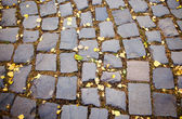 Cobble-stones road — Stock Photo