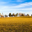 Royalty-Free Stock Photo: Agricultural field