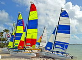 Catamarans on a Key Biscayne Beach — Stock Photo