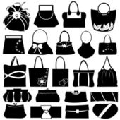 Female purse set — Stock Vector