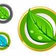 Green leaf icons — Stock Vector #6935259