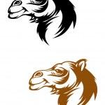 Camel mascot — Stock Vector