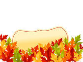 Autumn leaves on white background — Stock Vector