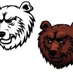 Wild kodiak bear — Stock Vector