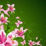 Floral frame — Stock Vector #7228708
