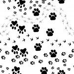 Animal footprint seamless pattern — Stock Vector