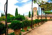 Dziedziniec pałacu alhambra — Zdjęcie stockowe