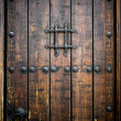Ancient wooden door — Stock Photo #7015956
