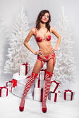 Beautiful brunette wearing sexy christmas lingerie indoors — Stock Photo